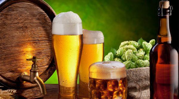 7 главных причин почему нужно пить пиво