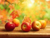 как сделать компот из яблок на зиму без стерилизации