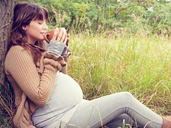 можно ли беременным иван-чай