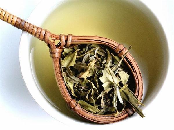 белый чай польза и вред-1