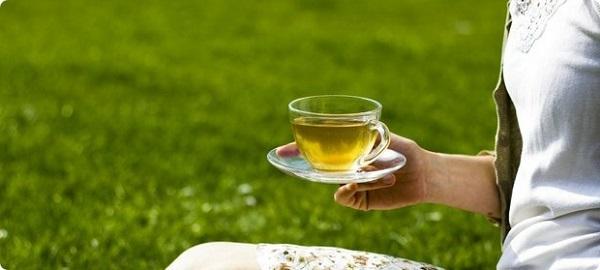 Для чего пьют зеленый чай