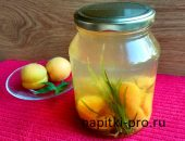 компот из абрикосов на зиму рецепт