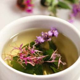 как пить иван чай правильно