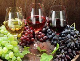 какое вино полезнее белое или красное